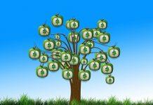 אחת ולתמיד: מה זה ביטוח מנהלים ולמה צריך אותו?